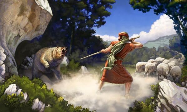 pastor-shepherd-guard-watch
