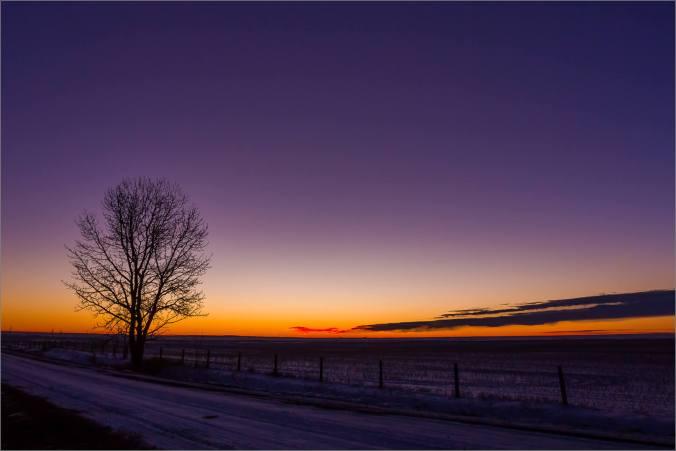 prairie-dawn-winter-morning
